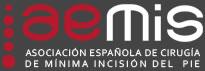 aemis-logo2